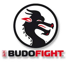 LOGO BUDO-FIGHT